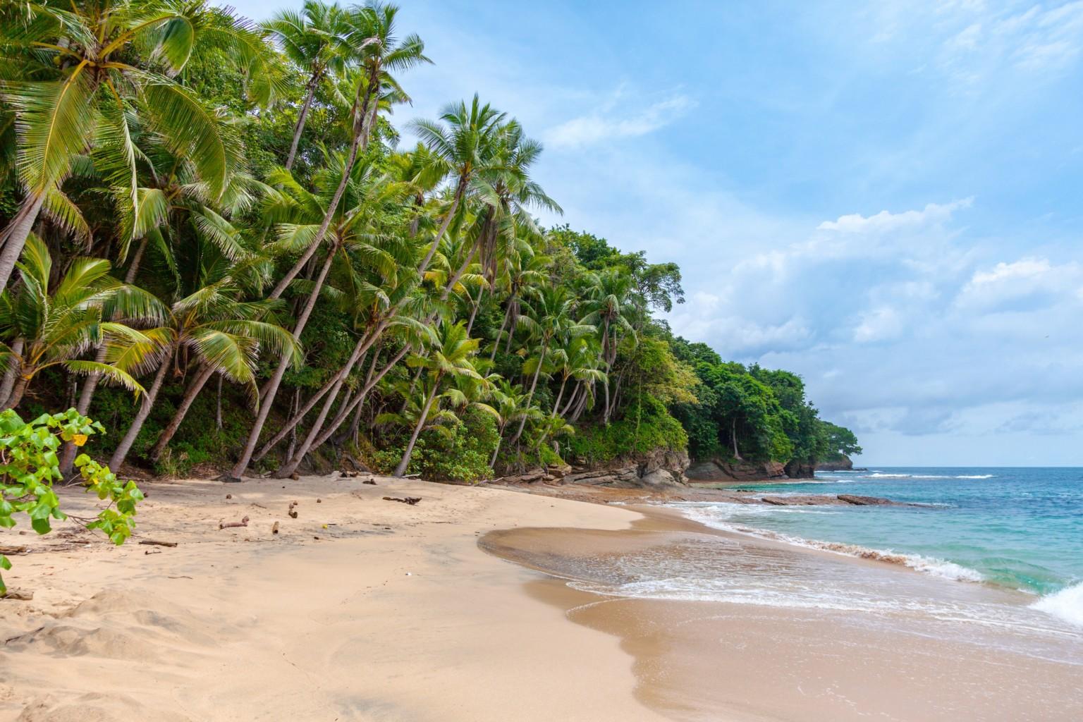 Viaje Dream 2020 a Costa Rica